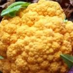 Cauliflower - Cheddar