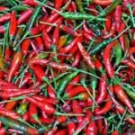 Pepper - Super Chili